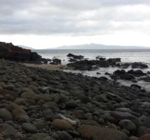 Freemans Beach